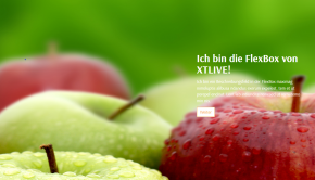 XTLIVE Flexbox xt:Commerce 5 / ohne Installationsservice